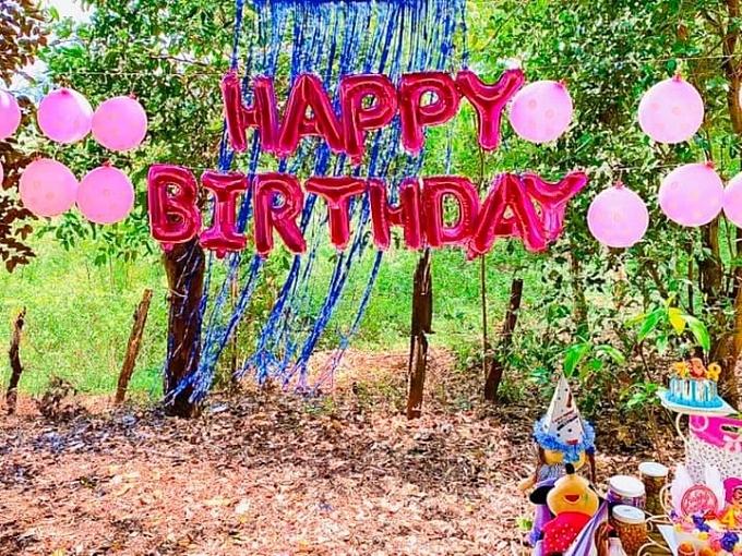 Tiệc sinh nhật diễn ra giữa vườn hoa và cây ăn trái xanh mát. Không gian buổi tiệc tràn ngập sắc hồng.