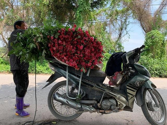 Chú Bình chồng cô Phương tranh thủ xếp nốt chuyến hoa cuối cùng của buổi sáng mang giao. Ảnh: Nguyễn Ngoan