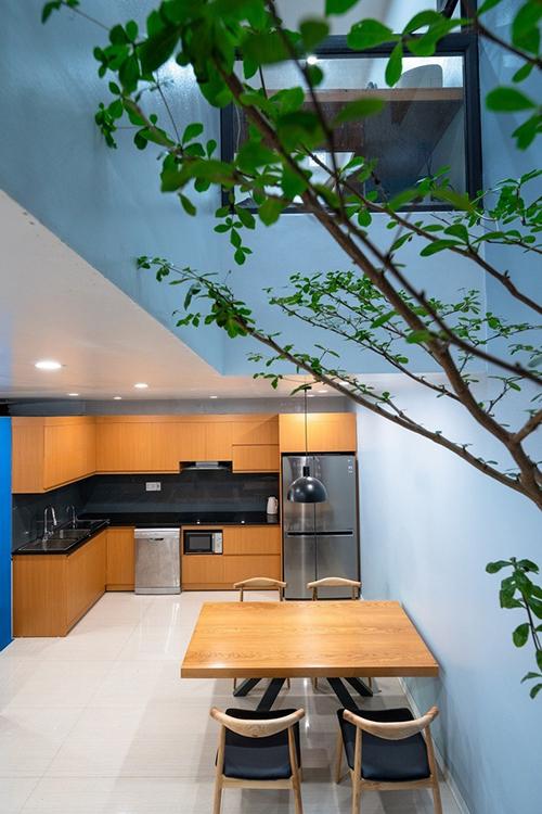 Cây xanh len lỏi nhiều ngóc ngách của căn nhà.