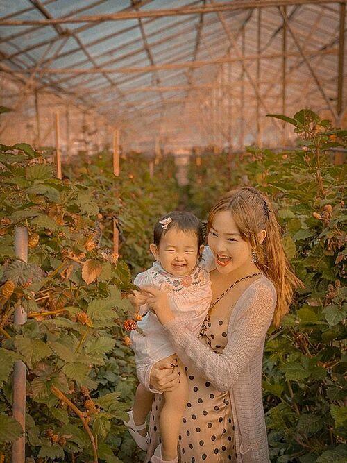 Minh Hằng vui đùa cùng cháu gái trong vườn dâu ở Đà Lạt.