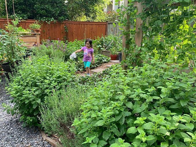 Những năm tháng đó giúp cho Misilla tích lũy kinh nghiệm trồng trọt và lựa chọn thực phẩm một cách tự nhiên. Điều này thực sự quan trọng khi cô lớn lên.