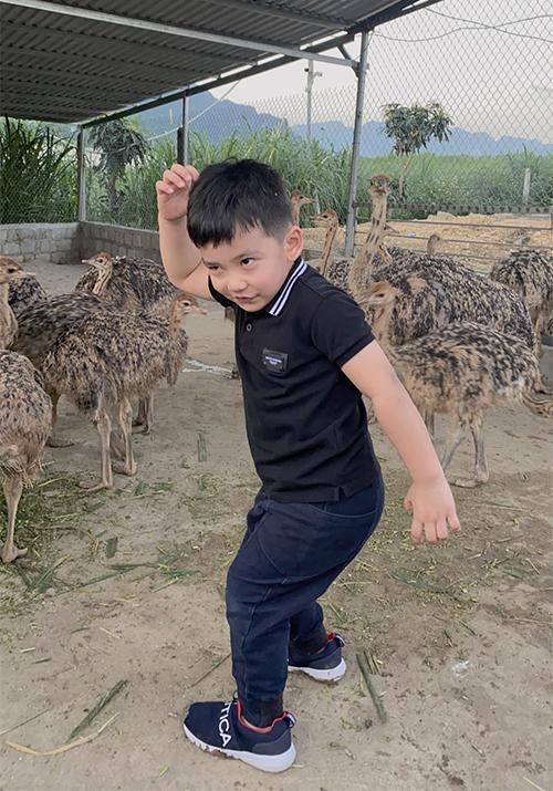 Nu tỏ ra rất dạn dĩ, không hề e sợ khi nhảy múa giữa đàn đà điểu. Nhìn thấy bất kỳ con vật nào, cậu nhóc cũng hào hứng chạy đuổi theo để đùa nghịch.