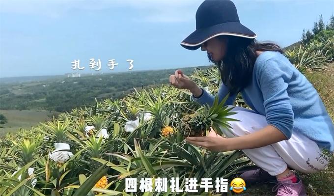 Vợ chủ tịch Taobao học nấu ăn,hưởng thụ cuộc sống