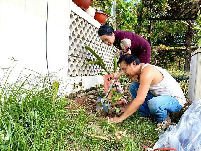 Diễn viên Kim Chi và chồng trồng thêm nhiều loại cây trong vườn nhà.