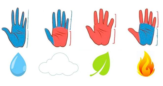 Đặc điểmbàn tay tiết lộ một phần tính cách