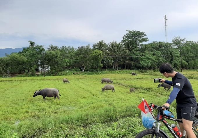 Dong Il thích thú vì lần đầu tiên được thấy trâu, bò ngoài đường.