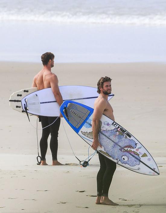 Cả hai đều sở hữu thân hình vạm vỡ và có chung niềm đam mê với biển cả.