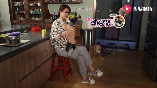Châu Hải My rất cưng bầy chó.