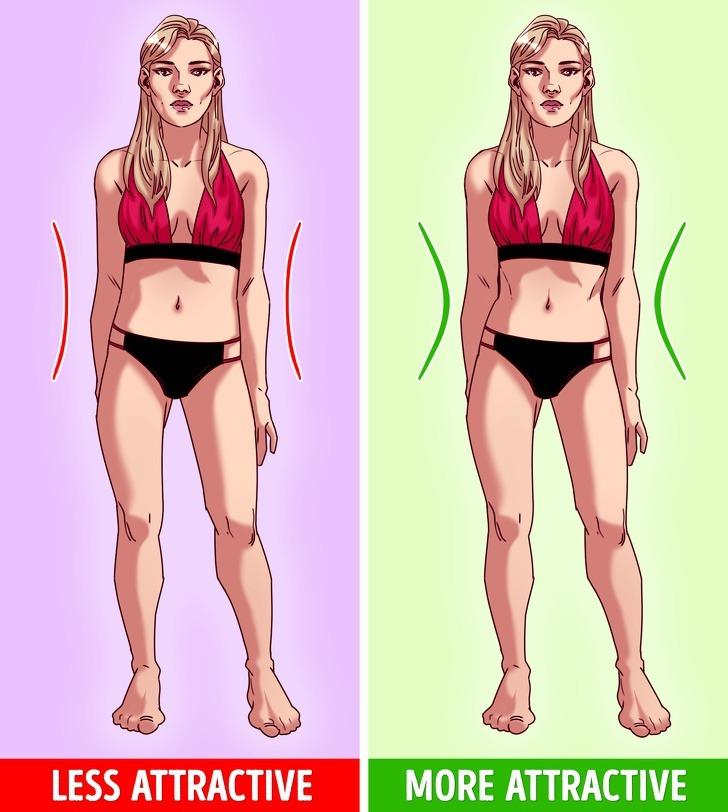 Tỷ lệ eo - hông ở phụ nữ luôn được xem là đặc điểm quan trọng, tăng khả năng thu hút người khác giới. Xu hướng hiện tại cho thấy eo nhỏ, mông nở giúp phụ nữ càng thêm hấp dẫn hơn trong mắt đàn ông.