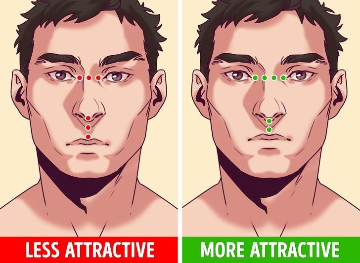 Các nhà nghiên cứu đã chỉ ra rằng khuôn mặt đối xứng có khả năng hấp dẫn đối phương hơn vì thị giác dễ dàng xử lý thông tin. Ngoài ra, người có gương mặt đối xứng, hài hòa còn được cho là thừa hưởng bộ gen tốt.