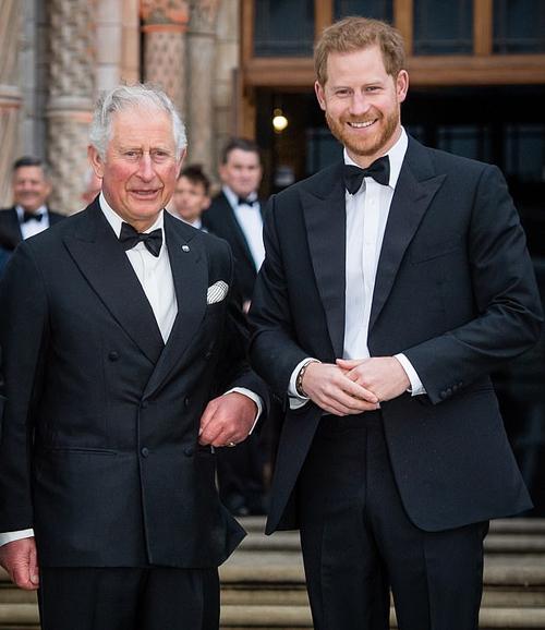Thái tử Charles cam kết tài trợ cho con trai Harry 2 triệu bảng trong năm đầu tiên cặp vợ chồng rời hoàng gia. Ảnh: WireImage.