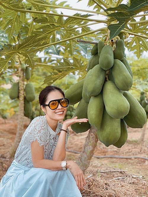 Dương Cẩm Lynh hào hứng pose hình bên vườn cây đu đủ sai trĩu quả.