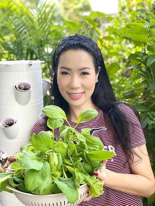 Diễn viên Kim Chi thu hoạch rau nhà trồng.