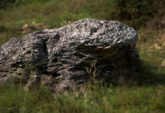 Hòn đá hình con cóc ở làng Đinh Ốc Lĩnh, tỉnh Phúc Kiến, Trung Quốc. Ảnh: Peoples Daily.