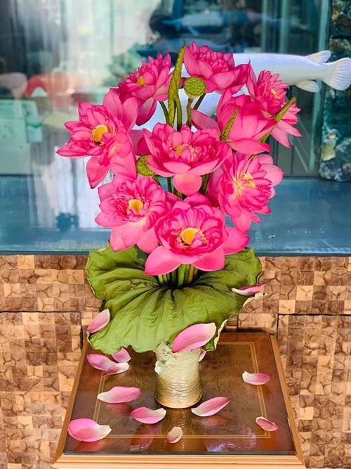 Đầm sen trong nhà của nam doanh nhân Hà Nội - page 2 - 16