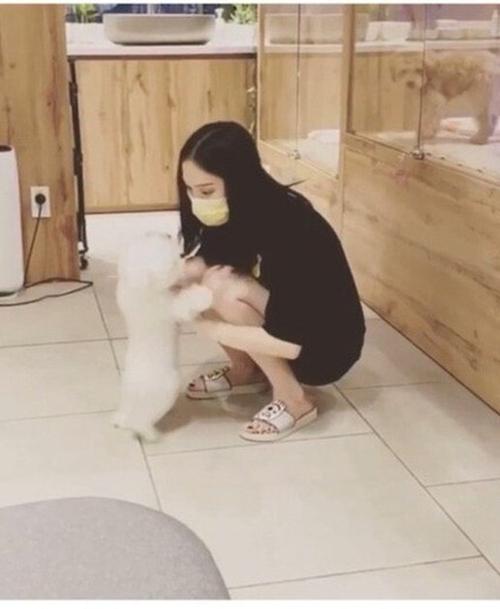 Không lâu sau, Phillip Nguyễn chia sẻ khoảnh khắc bạn gái nô đùa cùng chú thú cưng mà cả hai cùng chăm sóc.