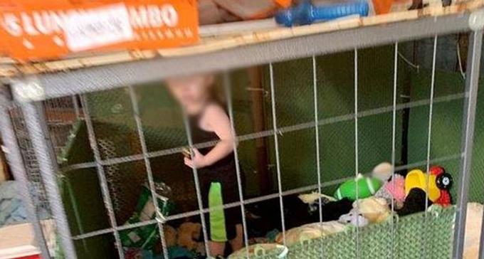 Bé 18 tháng bị bỏ đói, nhốt trong lồng xung quanh 700 con vật