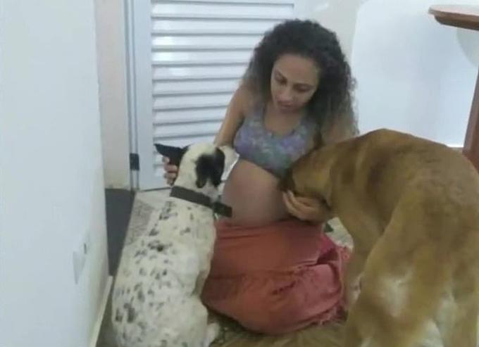 Elaine Novais và hai con chó cô nuôi, trong đó con chó giống Labrador bên phải. Ảnh: Focus News.