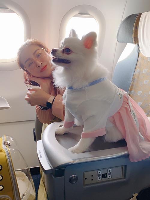 Nữ diễn viên mua sắm nhiều quần áo đẹp và chăm chút từng ly từng tý cho các chú cún.