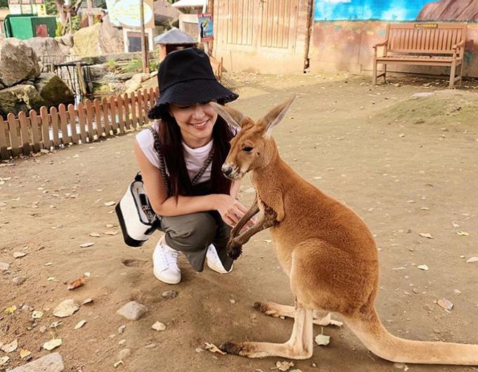 Không chỉ chó mèo, cô nàng yêu quý rất nhiều loại động vật. Nữ diễn viên vui vẻ chơi đùa cùng một chú kangaroo trong chuyến du lịch Australia năm 2018. Trần Oánh sở hữu gương mặt xinh đẹp chẳng kém các hoa hậu Hong Kong và có phần nổi bật hơn tình mới của Hà Du Hanh là hoa hậu Phùng Doanh Doanh. Cô được trao nhiều vai diễn trong các dự án phim gần đây của TVB như Quý nàng hẩm phận (đóng cùng với Trần Tùng Linh, Trương Triệu Huy), Chuyện bốn nàng luật sư, Cương, Đội điều tra liêm chính ICAC 2019... nhưng chưa được ghi nhận về diễn xuất.