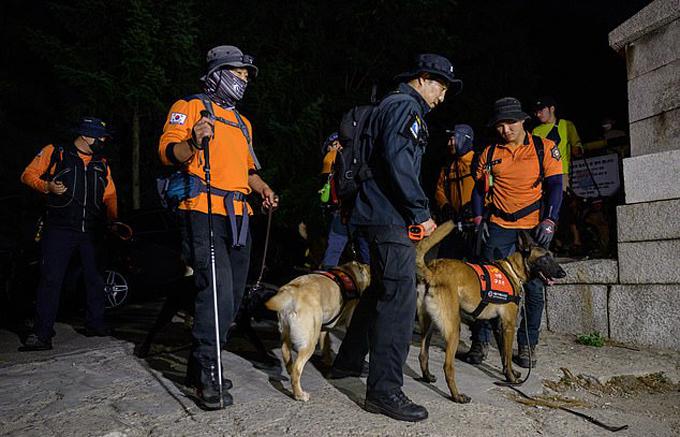 Lực lượng tìm kiếm hoạt động suốt tối 9/7 để tìm thị trưởng Seoul. Ảnh: AFP.
