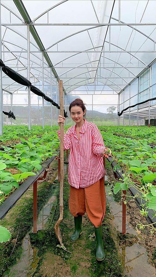 Midu hoá cô làm vườn khi chăm vườn dâu ở Đà Lạt.