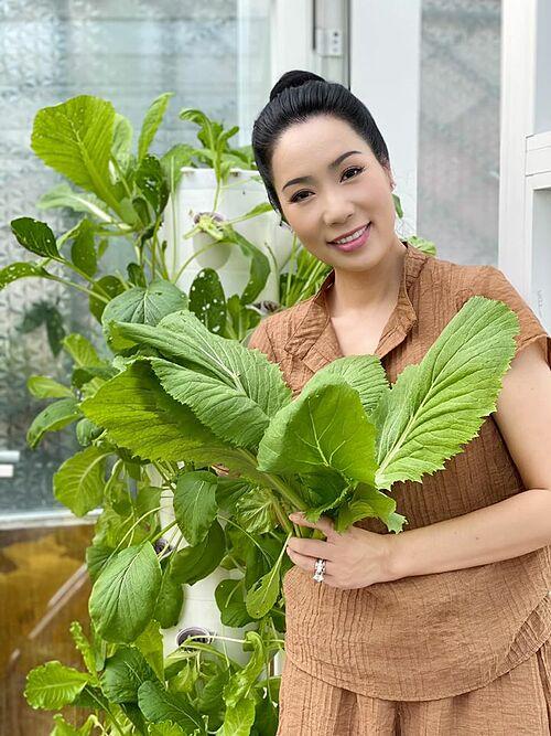 Diễn viên Kim Chi thu hoạch rau do ông xã trồng.
