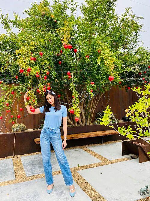 Dương Mỹ Linh pose ảnh bên cây lựu sai trĩu quả tại Mỹ.