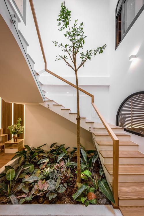 Hệ cầu thang bằng gỗ và kính hiện tại. Căn nhà có sân vườn ở giữa cạnh phòng khách, giúp thanh lọc không khí, tạo không gian để thành viên gia đình thư giãn, giải lao sau giờ làm việc căng thẳng. Theo phong thủy phương Đông, thiết kế sân vườn trong nhà cũng mang lại tài vận tốt cho thành viên trong gia đình.