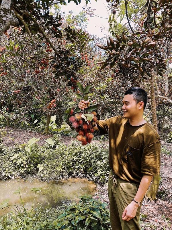 Đến Cồn Sơn thì không thể không ghé những vườn trái cây trĩu quả. Quang Vinh khoe chiến lợi phẩm là một chùm chôm chôm. Để đến đây, du khách đi qua cầu khỉ đặc trưng của miền Tây, dùng cây cù nèo tự hái quả rồi thưởng thức. Lưu ý, bạn nên mặc quần dài hoặc đem them thuốc chống côn trùng vì ở trong vườn có rất nhiều muỗi.