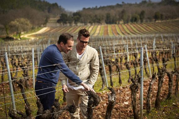 Brad Pitt (phải) khảo sát trang trại nho tại điền trang Miraval.