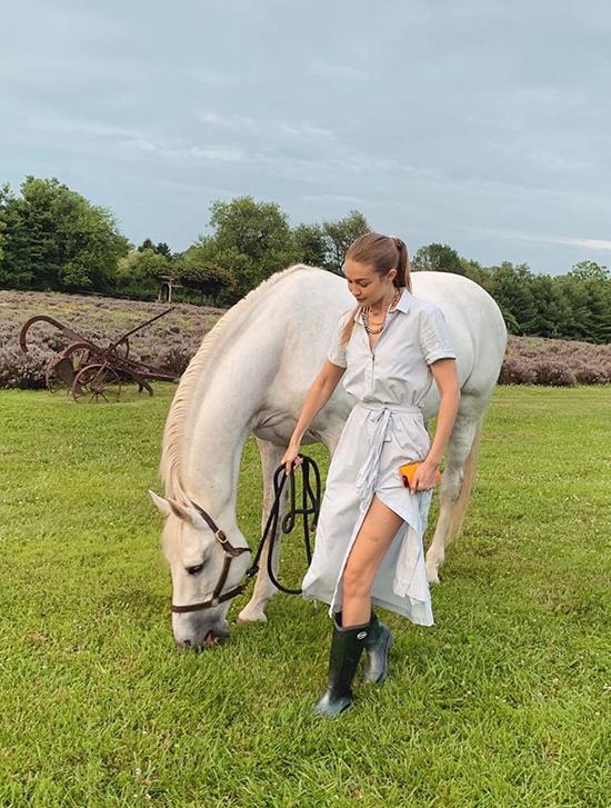 Các người đẹp mê chụp ảnh với ngựa - 2