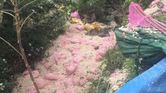 Hiện trường đầy tỏi ở huyện Thương Thành, tỉnh Hà Nam, nơi xảy ra vụ tai nạn khiến 8 người chết, 11 người bị thương hôm 15/9. Ảnh: Pear Video.