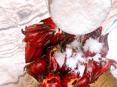 Siro atiso đỏ - 4