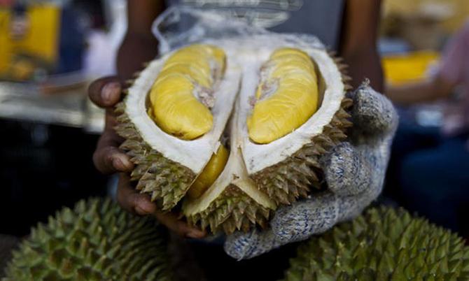 Sầu riêng là loại trái cây được ưa chuộng tại Trung Quốc. Ảnh: BKP.