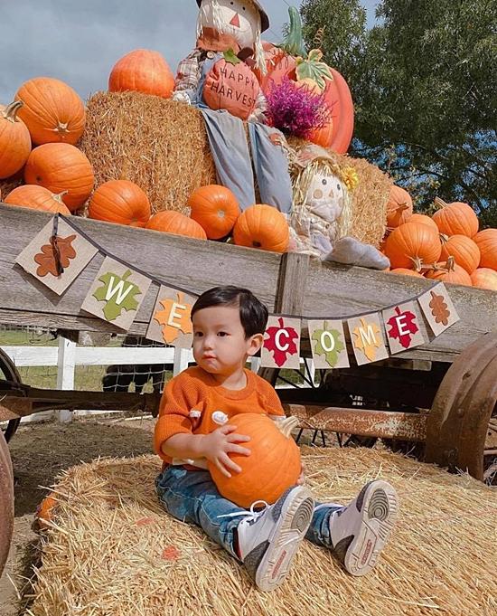 Phạm Hương đưa con trai đến một nông trai bí ngô để vui chơi dịp lễ hội. Cô khéo chọn áo màu ton-sur-ton bí ngô cho Max.
