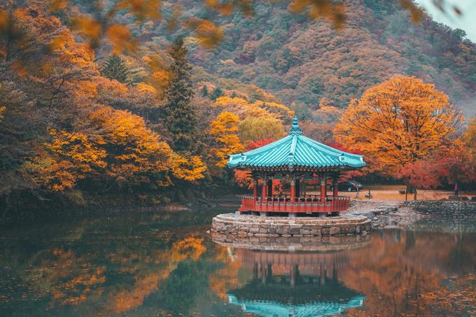 Naejang có nghĩa là ẩn chứa nhiều bí mật, là tên gọi hoàn hảo để miêu tả vể đẹp nơi này. Khi xưa nơi này được dùng để cất giấu và bảo vệ các tài liệu, biên niên sử quan trọng của triều đại Joseon. Hầu hết du khách sẽ chọn đi xe bus đến khu vực đón cáp treo. Theo anh, mọi người hãy đi bộ đến khu vực cáp treo, để tận hưởng vẻ đẹp hai bên đường.