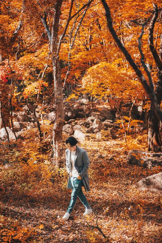 Bộ ảnh mùa thu xứ Hàn được Phan Thế Anh thực hiện trong những năm học tập và sinh sống tại đây. Theo anh, một trong những trải nghiệm nhất định phải thử khi đến Hàn Quốc vào mùa thu chính là chinh phục những con đường mòn của vườn quốc gia Seoraksan - nơi đón những tán lá vàng đỏ đầu tiên. Giữa tháng 10, hầu hết các con đường mòn đi bộ đường dài sẽ được bao phủ bởi những chiếc lá vàng và đỏ đậm tại vườn quốc gia Seoraksan. Nếu muốn thử thách bản thân, bạn có thể đi bộ đường dài lên Seoraksan trong khi tận hưởng những khung cảnh mùa thu và dành cả ngày ở đây.