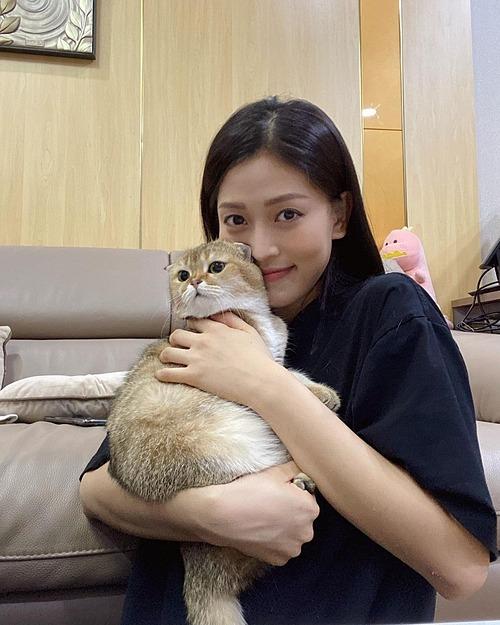Á hậu Phương Nga thích thú chơi đùa với mèo cưng. Cô bảo nhìn quần áo là biết nhà nuôi mèo.