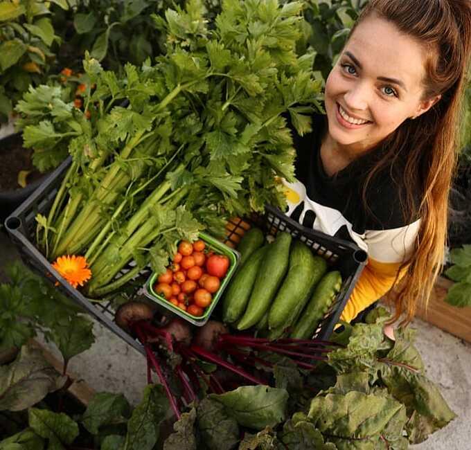 Giáng sinh năm ngoái, bạn trai của Chloe đã tặng cho cô một nhà màng trồng rau lợp tấm polycarbonate đầu tiên. Sau đó, Chloe nhanh chóng mở rộng và phát triển công việc trồng trọt.