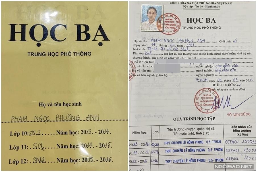 Phạm Ngọc Phương Anh sinh ra ở TP HCM nhưng lớn lên ở Biên Hòa, Đồng Nai. Phương Anh học tiếng Pháp từ thời cấp một tại trường tiểu học Nguyễn Du, thành phố Biên Hòa. Khi cô lên cấp hai, gia đình mới chuyển lên TP HCM sinh sống. Dù thay đổi môi trường học tập, cô vẫn nỗ lực và đạt kết quả cao. Trong đó, cô ghi dấu ấn với thành tích thủ khoa đầu vào khối song ngữ trường THPT chuyên Lê Hồng Phong TP HCM.