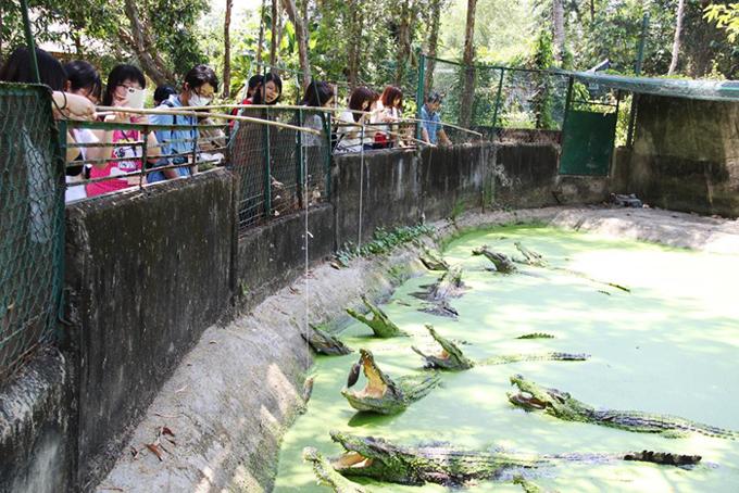 Elly Trần thử trải nghiệm câu cá sấu rớt tim - 2