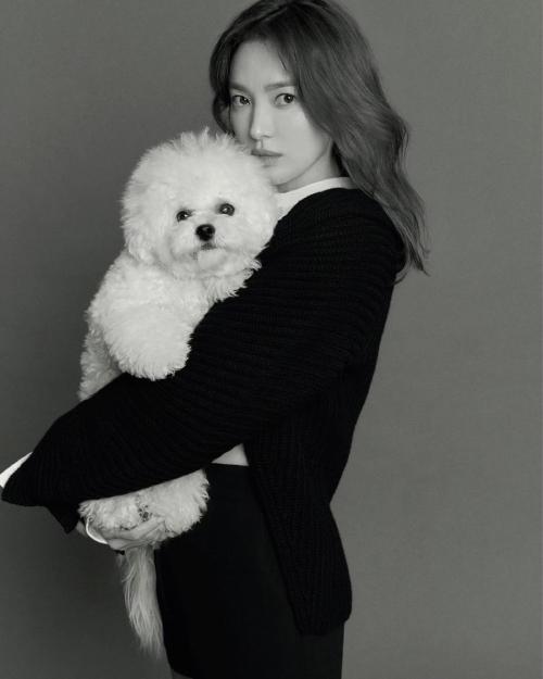 Khí chất là hai từ mà Vogue dùng để mô tả về Song Hye Kyo. Ê kíp chụp ảnh khen ngợi nữ diễn viên người nhỏ nhắn, luôn tạo cảm giác thân thiện và chân thật.