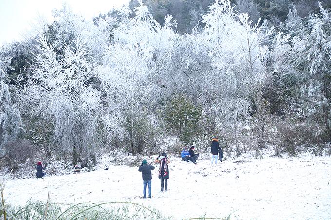 Sáng 11/1, tại Y Tý, Bát Xát, Lào Cai đã xảy ra hiện tượng mưa tuyết, băng giá - dạng thời tiết cực kỳ hiếm gặp ở Việt Nam. Do đó, những ai có thể may mắn săn tuyết tại nơi đây đã có trải nghiệm lý thú, được chiêm ngưỡng những cành cây đóng băng, chạm tay vào lớp tuyết phủ dày.