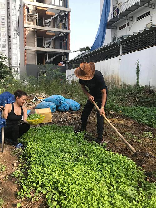 Bố Hà Hồ cuốc đất để chuẩn bị đất tốt cho lứa rau mới.