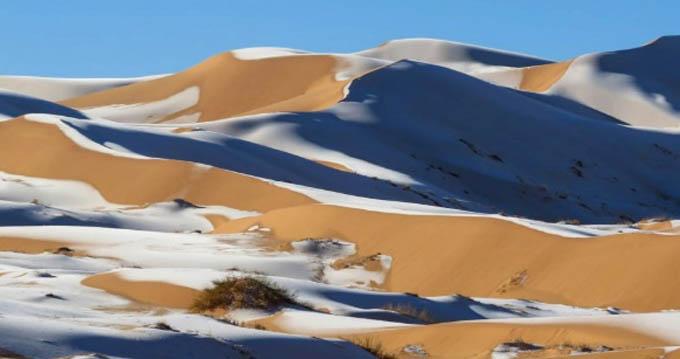 Nhiếp ảnh gia Karim Bouchetata hôm 13/1 chụp được bộ ảnh tuyệt đẹp, cho thấy băng tuyết bao phủ lớp cát của sa mạc Sahara thuộc địa phận thị trấn  Aïn Séfra ở Algeria. Trong ảnh, đàn cừu đứng trên các đụn tuyết trắng khi nhiệt độ ở đây đột nhiên hạ xuống còn âm 3 độ C.