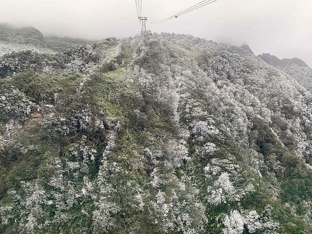 Các đợt lạnh liên tiếp, tăng cường trong những ngày qua mang băng tuyết đến với vùng cao Tây Bắc. Từ các cabin cáp treo Fansipan đang chầm chậm xuyên mây đến với Nóc nhà Đông Dương, du khách được tận mắt chiêm ngưỡng lớp băng giá phủ trắng những vạt rừng trên triền núi. Ánh bạc long lanh của băng hòa cùng màu sương mây mờ ảo khiến núi rừng Fansipan càng thêm kỳ ảo, mê hoặc.