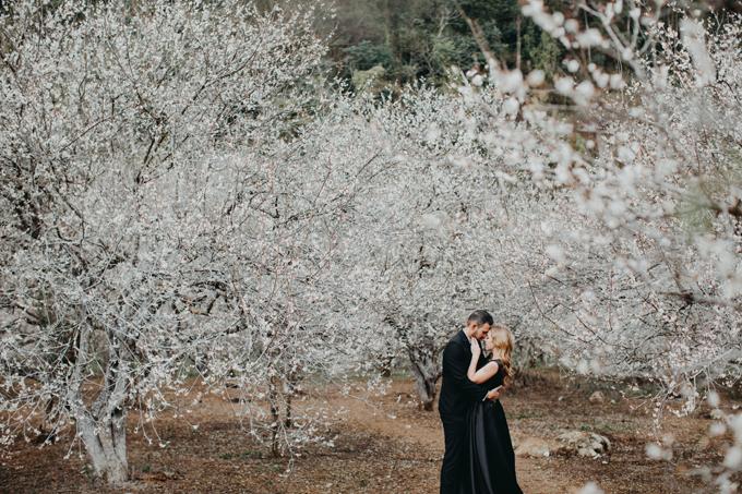 Khung cảnh thiên nhiên với hoa mơ nở bông xòe làm nền khiến tấm ảnh cưới thêm lãng mạn.