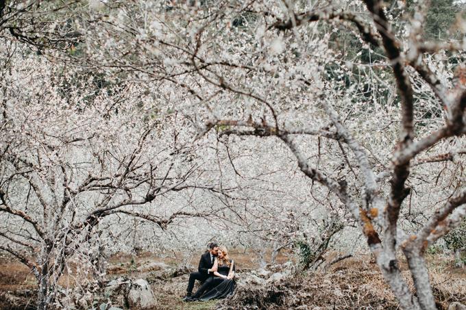 Bên cạnh việc bấm máy ở rừng mơ Mộc Châu, uyên ương còn chụp thêm ảnh ở Tà Xùa và hồ Ba Khan, Hòa Bình với chi phí 20 triệu đồng (di chuyển, trang phục, ảnh...).