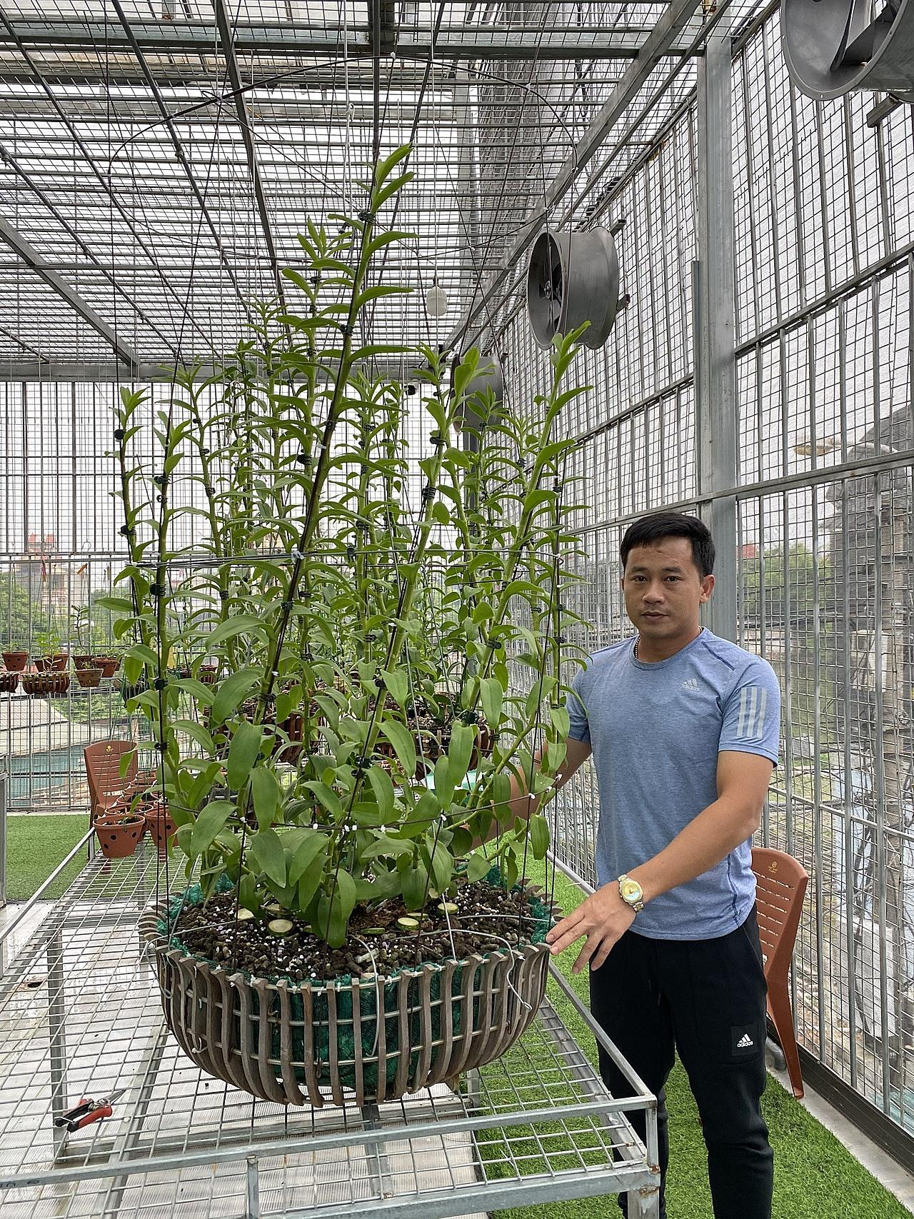 Anh Bằng đầu tư hàng trăm triệu đồng vào vườn lan mỗi năm.